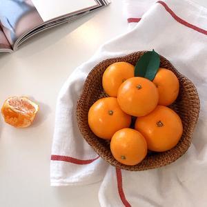 [제주열매] 고당도 진지향/카라향(3kg/5kg)
