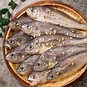 [수산시장직송]군산 반건조 생선(가자미/참조기/갈치/고등어) 대표이미지 섬네일