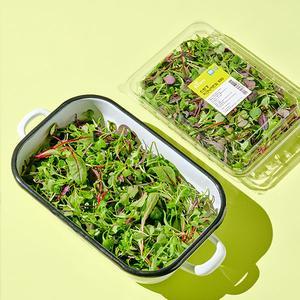 무농약 피크닉 어린잎 채소 (100g) 대표이미지 섬네일