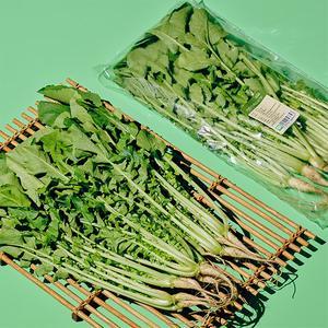 유기농 열무 (400g) 대표이미지 섬네일