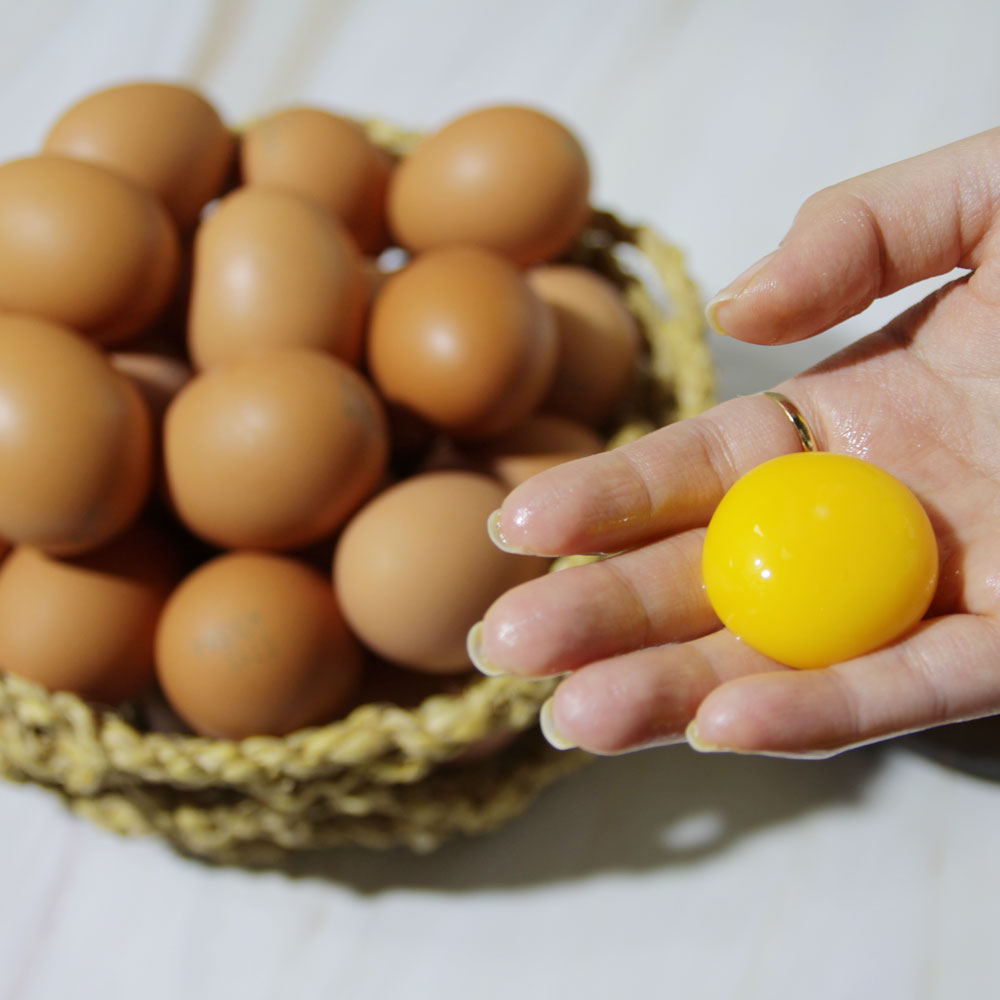 무항생제 HACCP 인증 계란 60구(30구*2) 대표이미지 섬네일