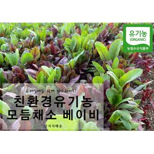 유기농 베이비채소 500g 대표이미지 섬네일