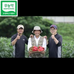 [산지직송] 너이농장 친환경 21년도 최상급 햇 건고추 1근(600g)  대표이미지 섬네일