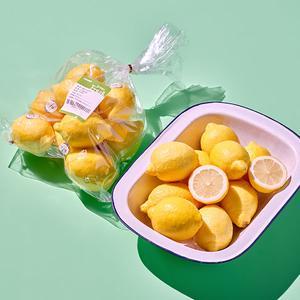 레몬(10입/1.1kg내외) 대표이미지 섬네일