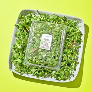 베이비 채소 샐러드 (100g)