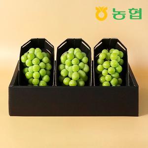아삭달콤 샤인머스켓 선물세트 명품1호 (2kg/3입) 대표이미지 섬네일
