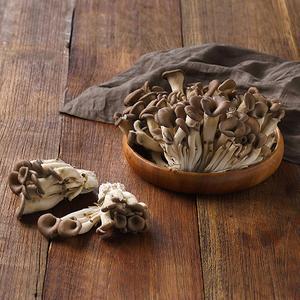 무농약 느타리버섯(300g) 대표이미지 섬네일