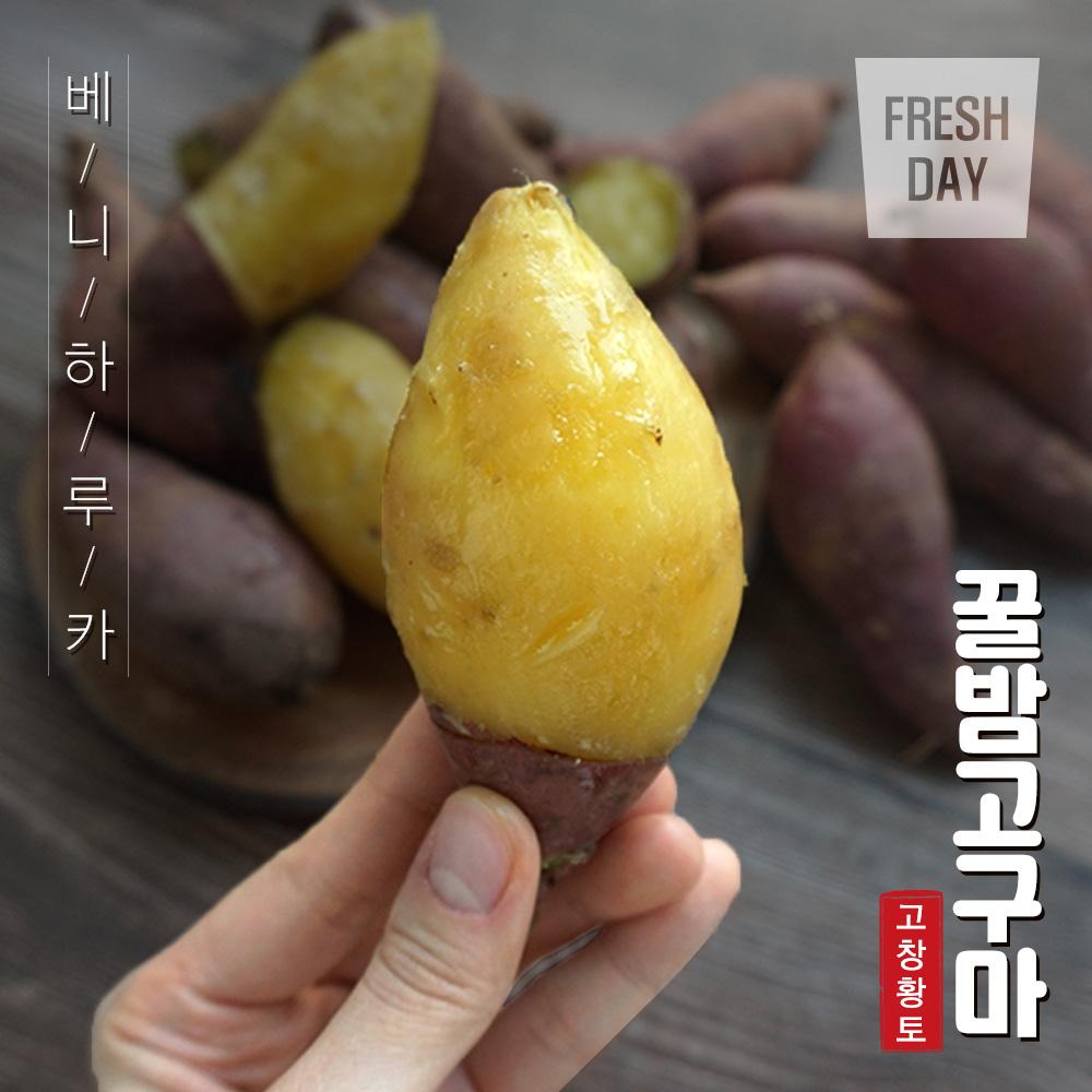 달콤한 고창 꿀밤 고구마 3~10kg (소) 대표이미지 섬네일
