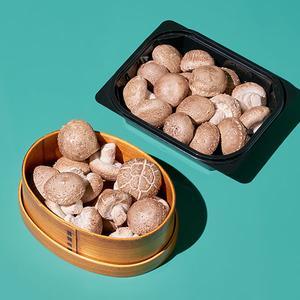 무농약 미니 표고버섯(150g) 대표이미지 섬네일