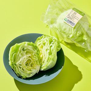 유기농 양상추 (1통, 250g이상)