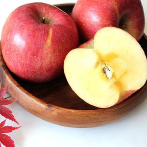 경북 영양 꿀부사 사과 5kg 가정용 흠과 대표이미지 섬네일