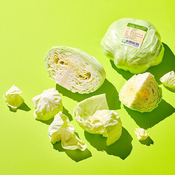 유기농 양배추 (소, 800g~1kg)