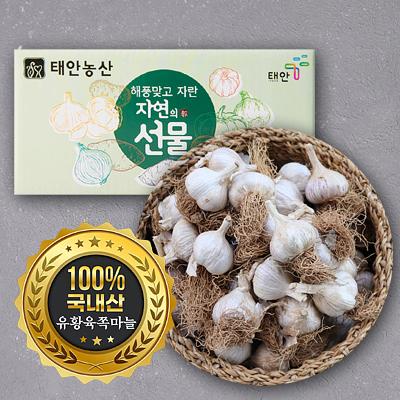 [태안농산]알이굵고 단단한 태안유황육쪽마늘(1kg,3kg,5kg) 대표이미지 섬네일